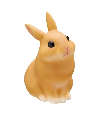 ネザーランド・ドワーフ オレンジ(おすわり)