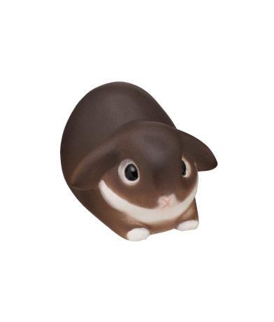 ホーランド・ロップ チョコレートオター(箱座り)