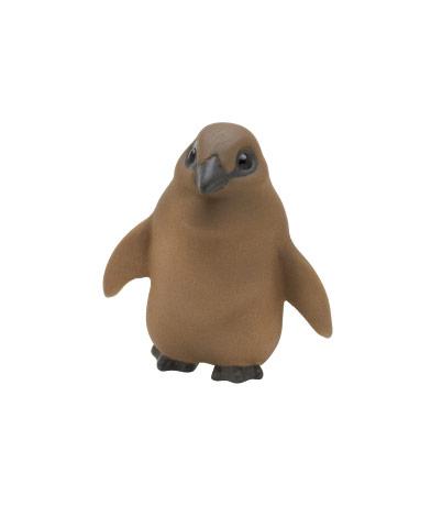 オウサマペンギン(ひな)