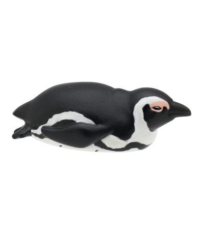 ケープペンギン(成鳥)