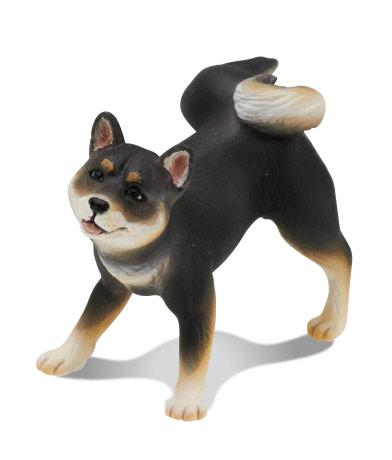 柴犬(黒)