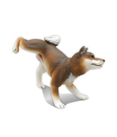 柴犬 (胡麻)
