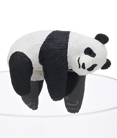 パンダ/お昼寝
