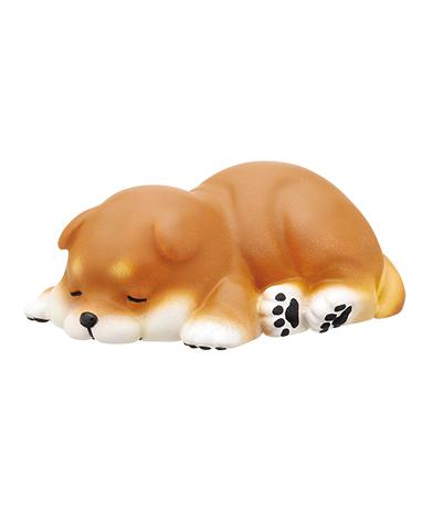 寝ころび(赤柴)